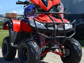 Atv Model:Bmw 125Cc 3g7 Tractiune 4w2