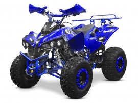 Atv Warrior Sport Edition 125cmc